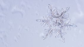Beautiful snow flake on a light blue background close up. Beautiful snow flake on light blue background close-up stock images