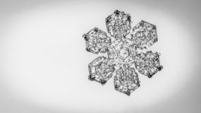 Beautiful snow flake on a light grey background close up. Beautiful snow flake on light grey background close-up royalty free stock photography