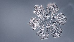 Beautiful snow flake on a light grey background close up. Beautiful snow flake on light grey background close-up royalty free stock image