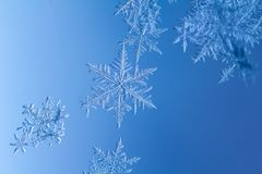 Free Beautiful Snow Flake On A Light Blue Background Close Up Royalty Free Stock Photography - 136399967
