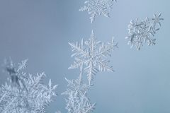Free Beautiful Snow Flake On A Light Blue Background Close Up Royalty Free Stock Photos - 136399978