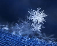 Beautiful snow flake on woven wool Royalty Free Stock Photo