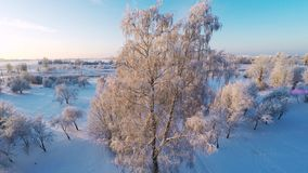 Beautiful snow landscape. Winter trees. Sunset. Aerial footage. Flying around. Beautiful snow landscape. winter trees panorama. Sunset. Aerial view. Fly over stock video footage