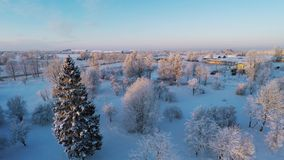 Beautiful snow landscape. Winter trees. Sunset. Aerial footage. Flying around. Beautiful snow landscape. winter trees panorama. Sunset. Aerial view. Fly over stock video