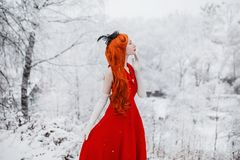 Beautiful snow maiden girl with red hair on winter nature. Beautiful redhead retro woman in red dress and with long gloves on back. Ground of winter nature. Snow royalty free stock photos