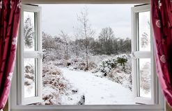 Beautiful snow path scene through an open window. View through open window onto a beautiful snow covered nature path in winter in rural England. Red curtains Stock Photo