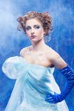 Beautiful snow queen Royalty Free Stock Photos