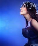 Beautiful snow queen Stock Images