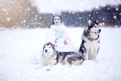 Beautiful snow queen with dogs Stock Photos
