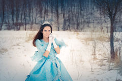 Beautiful Snow Queen in Winter Decor Stock Photography