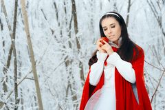 Beautiful Snow White Princess in Winter Fairy Tale Wonderland Stock Image