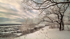 Beautiful snow winter landscape Royalty Free Stock Images