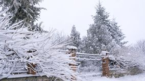 Beautiful stone fence and trees laden with snow stock image