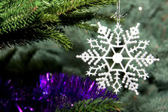 Beautiful snowflake on a Christmas tree Royalty Free Stock Image