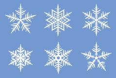 Beautiful snowflakes. Royalty Free Stock Photography
