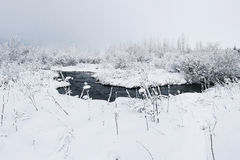 Beautiful snowsacpe with a small stream Stock Photo
