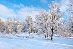 Beautiful snowy landscape by the Narew river valley. Royalty Free Stock Image