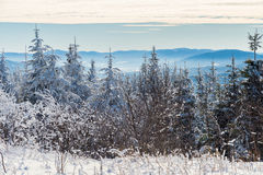 Beautiful snowy landscape in Quebec, Canada royalty free stock photo