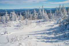 Beautiful snowy landscape in Quebec, Canada royalty free stock photography