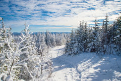 Beautiful snowy landscape in Quebec, Canada stock photo