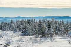 Beautiful snowy landscape in Quebec, Canada stock images