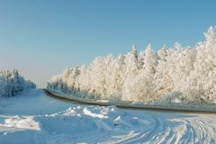 Beautiful snowy landscape. Winter road in a snowy forest . stock photo