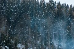 Beautiful snowy mountain forest in boiler plant fumes. Beautiful mountain forest in boiler plant fumes royalty free stock photo