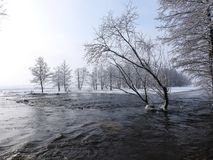 Channel and snowy trees in winter, Lithuania Royalty Free Stock Photo