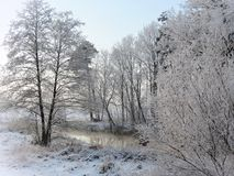 Beautiful snowy trees and river in winter, Lithuania stock photography