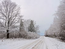 Beautiful snowy trees and road , Lithuania Stock Photo