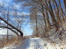 Walking path near river Nemunas, Lithuania Royalty Free Stock Photography