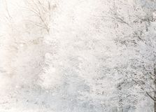Beautiful Snowy White Forest In Winter Frosty Day. Winter Woods stock images
