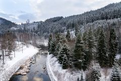 Beautiful snowy winter forest landscape, Tepla River under Brezova dam royalty free stock images