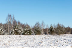 Beautiful snowy winter landscape Royalty Free Stock Photo