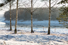 Beautiful snowy winter landscape Royalty Free Stock Photo