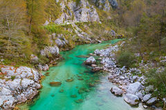 Beautiful Soca river at autumn in the Triglav National Park Stock Images