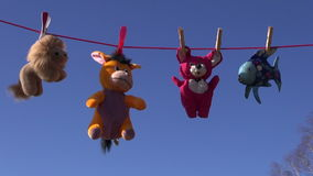 Beautiful soft toys on clothes line and sky stock video