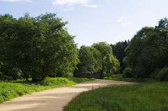 Beautiful soil wood road to a picturesque place Royalty Free Stock Photography