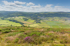 Beautiful Somerset countryside towards Porlock near Exmoor from the south west coast path. England UK with pink flowers royalty free stock photo