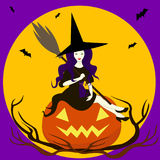 Beautiful sorceress  sits on pumpkin. In hand broom,on knees cat.Merry cartoon witch.Vector illustration of a valpurgis night. Enchantress in a hat  black dress Royalty Free Stock Photos
