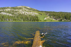 The beautiful Sotcher Lake Royalty Free Stock Photo