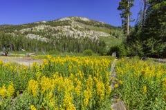 The beautiful Sotcher Lake Stock Photos