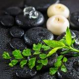 Beautiful spa έννοια της πράσινης φτέρης κλαδίσκων, μπαμπού, πάγος και candl Στοκ Φωτογραφίες