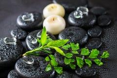 Beautiful spa έννοια της πράσινης φτέρης κλαδίσκων, μπαμπού, πάγος και candl Στοκ Εικόνες