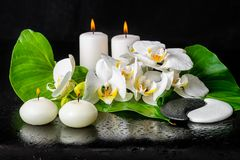 Beautiful spa ακόμα ζωή του ανθίζοντας άσπρου λουλουδιού ορχιδεών, phalae Στοκ Εικόνες