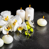 Beautiful spa ακόμα ζωή του ανθίζοντας άσπρου λουλουδιού ορχιδεών Στοκ Φωτογραφία