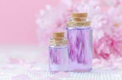 Beautiful spa σύνθεση με δύο μπουκάλια των ουσιαστικών πετρελαίων, φρέσκα λουλούδια στο ρόδινο υπόβαθρο, εκλεκτική εστίαση Στοκ Φωτογραφίες