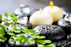 Beautiful spa background of green twig fern, ice and candles on Royalty Free Stock Image