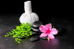 Beautiful spa background of pink hibiscus flower, leaf fern, tha Stock Photography