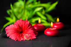 Beautiful spa background of red hibiscus flower, bamboo and cand Stock Photos